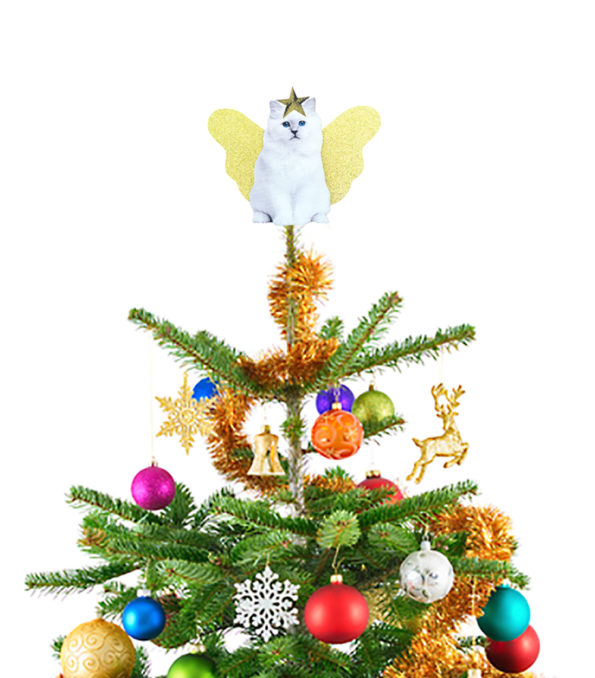 cattreetopper_visual