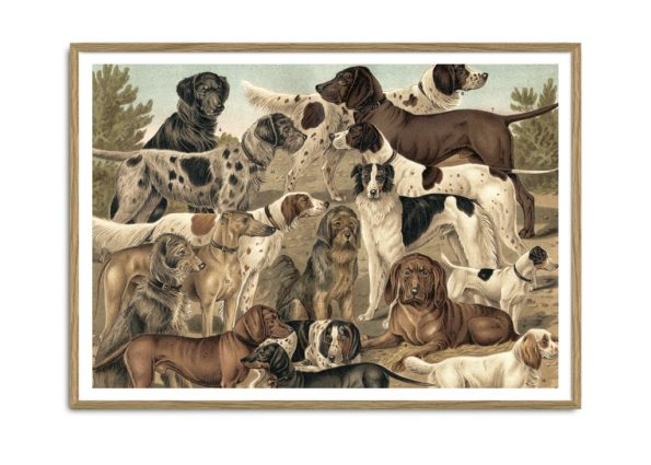 Dogs Horizontal Print