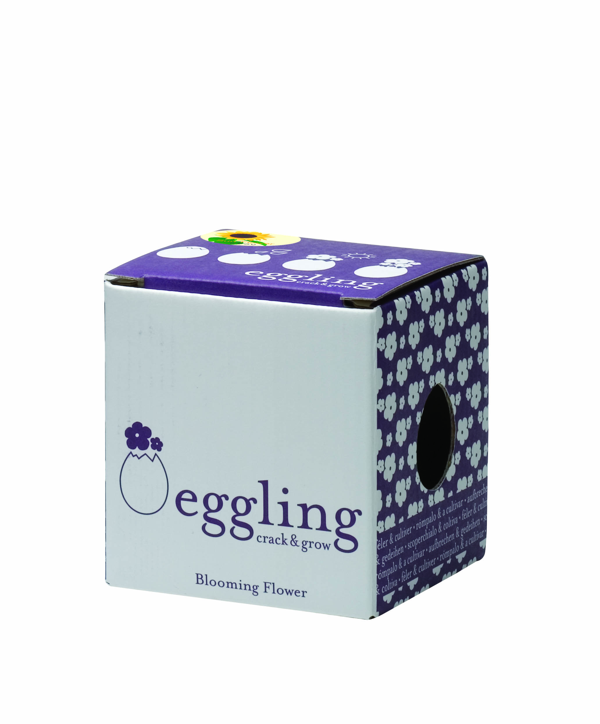 Eggling box sunflr design collective gifts for Design your own egg boxes